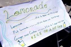 Is There Anything We Are Still Free To Do Without Government Permission? Lemonade Stand 250x165