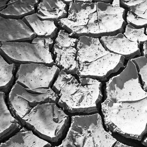 Drought - Photo by Bert Kaufmann