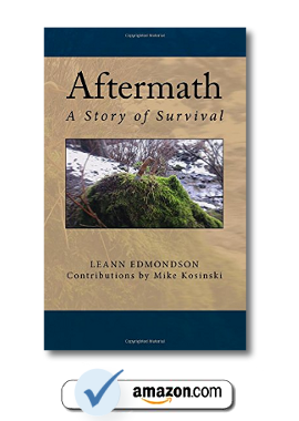 Aftermath Story of Survival End Of The American Dream