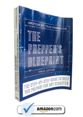 The Preppers Blueprint End Of The American Dream
