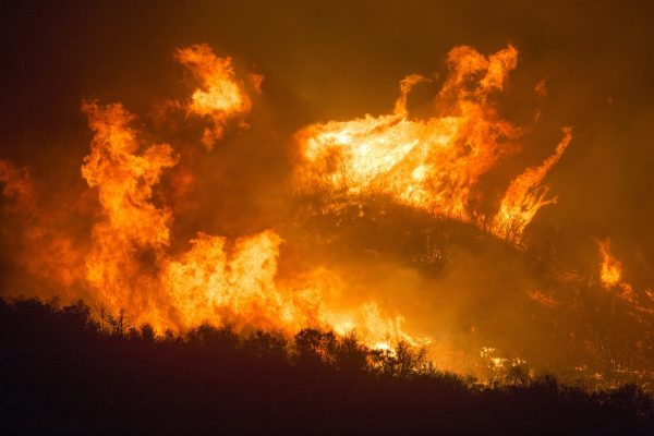 """The """"Lungs Of The Earth"""" Are Literally Being Burned Away As Unprecedented Wildfires Absolutely Ravage Our Planet – Investment Watch"""