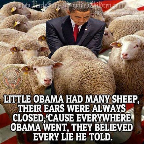Obama And His Sheep - from Facebook